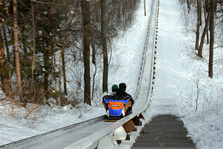 People on a Toboggan